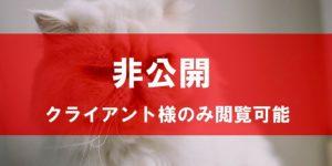 ペルシャ猫 インフルエンサー